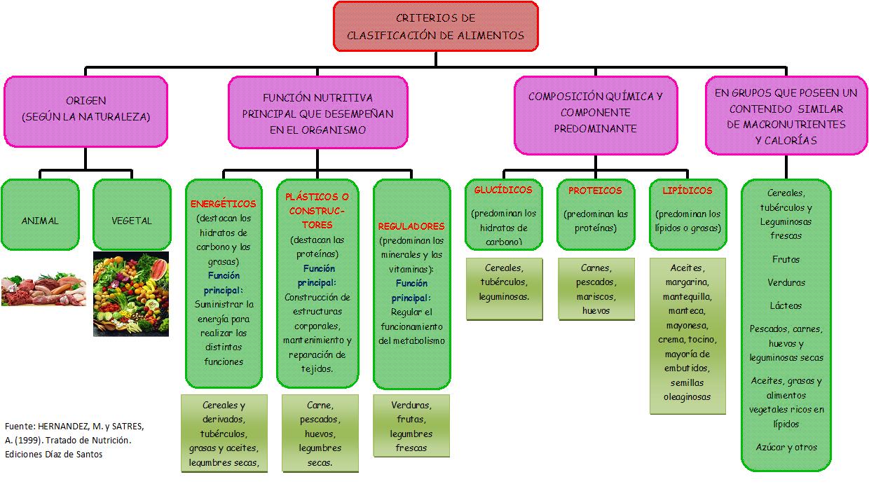 Los alimentos composici n y propiedades for Cocina molecular definicion