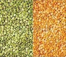 variedades guisantes